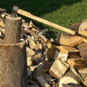 Спил,  распил деревьев. Покол дров